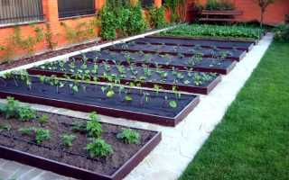 Интересные идеи для дома и сада