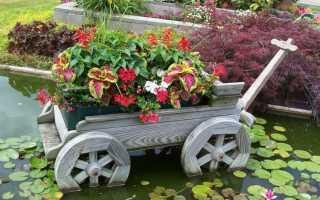 Идеи для сада для цветов