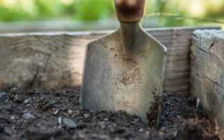 Инструменты для ухода за садом