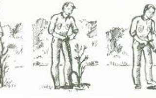 Инструмент для посадки деревьев