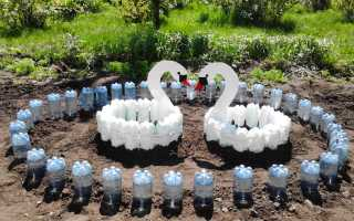 Использование пластиковых бутылок в саду и огороде