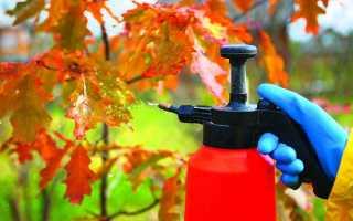 Искореняющая обработка сада осенью