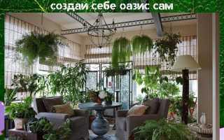 Идеи зимнего сада в квартире фото