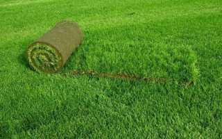 Искусственная трава для сада