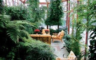 Интерьеры зимних садов фото