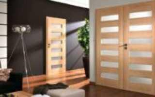 Распашные двери со стеклом фото