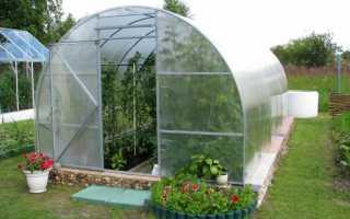 Садовые теплицы фото