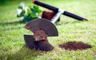Как выбрать садовый бур