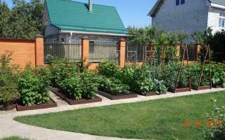 Идеальный сад и огород