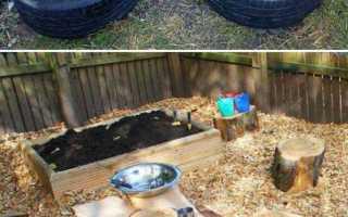 Изюминки нашего сада