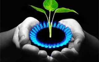 Добыча газа из навоза в домашних условиях